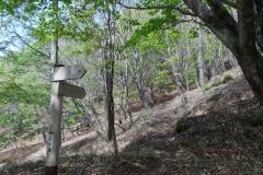 g_Gangaharasuriyama170521_23